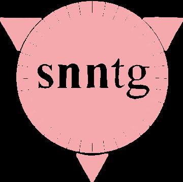 Snntg logo kreis 1